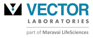 Vector Laboratories
